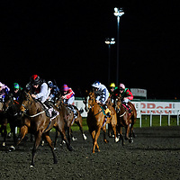 Kempton 11th January