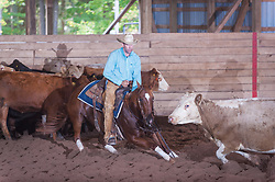 September 24, 2017 - Minshall Farm Cutting 6, held at Minshall Farms, Hillsburgh Ontario. The event was put on by the Ontario Cutting Horse Association. Riding in the $5,000 Novice Horse Class is Eric Van Boekel on Love That Dog owned by the rider.