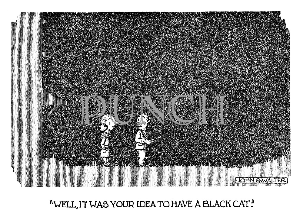 """Well, it was your idea to have a black cat."""