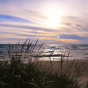 """Beyond Grasses Tall""<br />