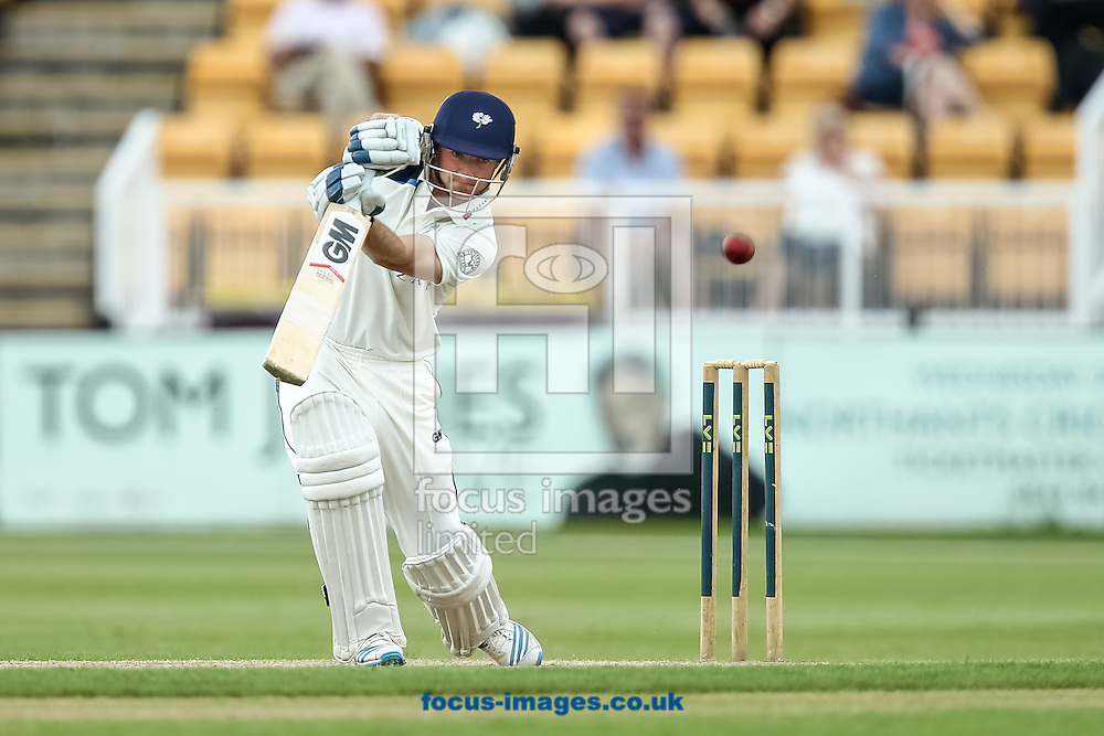 Adam Lyth of Yorkshire County Cricket Club during the LV County Championship Div One match at the County Ground, Northampton, Northampton<br /> Picture by Andy Kearns/Focus Images Ltd 0781 864 4264<br /> 01/06/2014
