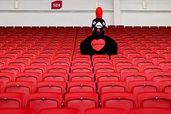 Nando's Guess the seat image - Mandatory byline: Rogan Thomson/JMP - 06/03/2016 - RUGBY UNION - Ashton Gate Stadium - Bristol, England - Bristol Rugby v Cornish Pirates - Greene King IPA Championship.