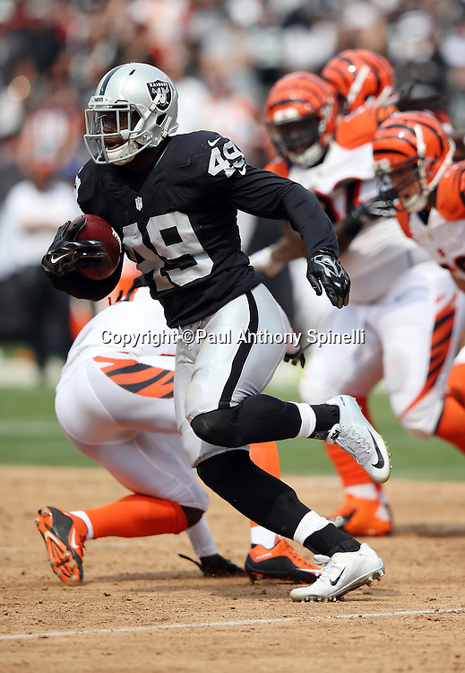 Oakland Raiders running back Jamize Olawale (49) runs for a gain of 60 yards on a second quarter play called back due to offsetting penalties during the 2015 NFL week 1 regular season football game against the Cincinnati Bengals on Sunday, Sept. 13, 2015 in Oakland, Calif. The Bengals won the game 33-13. (©Paul Anthony Spinelli)