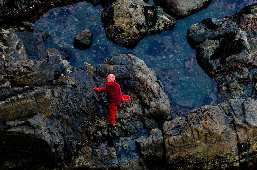 """A haenyo, or """"sea woman"""", collects shellfish in the tidal pools of Taejongdae, a natural park on the coast of the port city Busan, South Korea."""