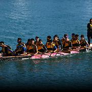 Wellington Dragonboating