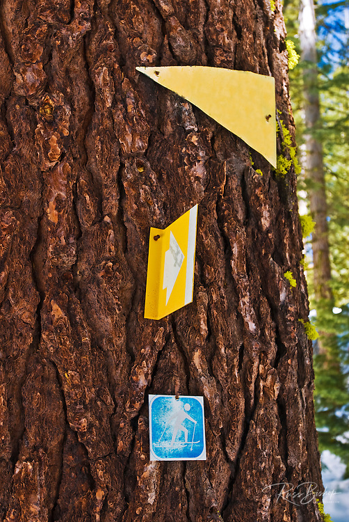 Cross country ski trail markers near Glacier Point, Yosemite National Park, California
