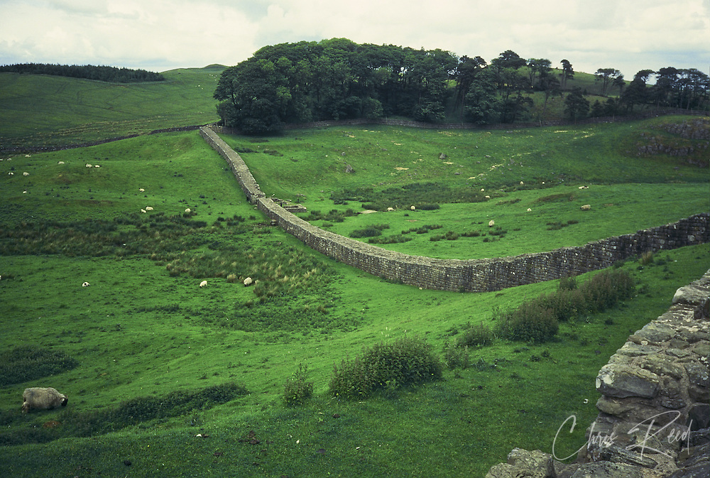 United Kingdom, Northumberland. Hadrian's Wall stretches along the English countryside.