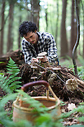 Ari Rockland-Miller forages for mushrooms near his home in Brattleboro.