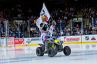 KELOWNA, CANADA - SEPTEMBER 29: Kelowna Rockets' mascot Rocky Racoon enters the ice on his polaris quad against the Everett Silvertips on September 29, 2017 at Prospera Place in Kelowna, British Columbia, Canada.  (Photo by Marissa Baecker/Shoot the Breeze)  *** Local Caption ***