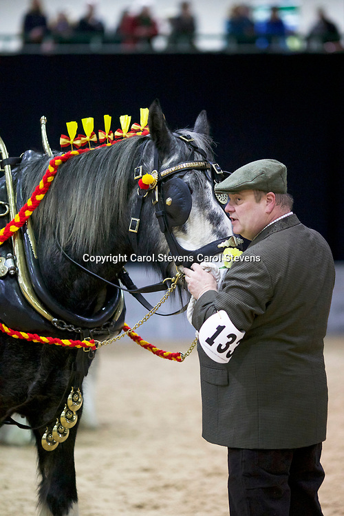 Mr S Kemp with PORTH SWTAN SILVER CLOUD<br /> 4th Decorated Harness