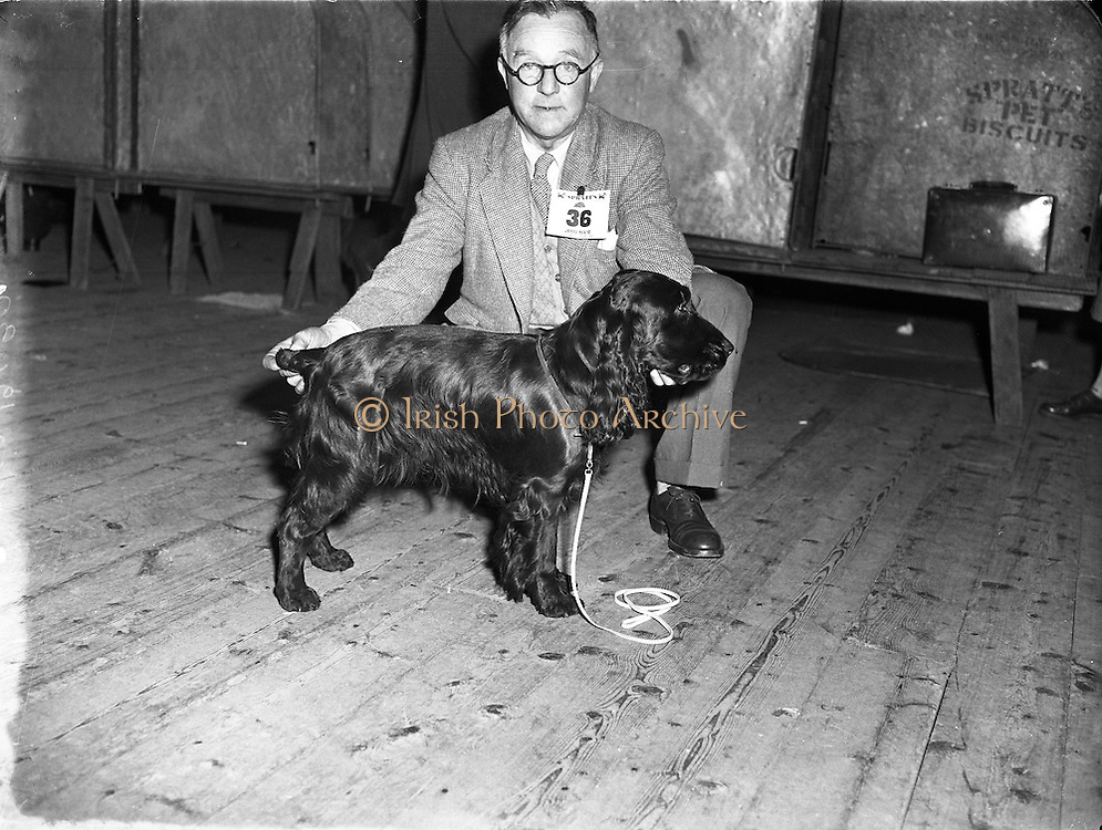 Cocker Spaniel Club of Ireland's 25th Show .26/04/1958 .
