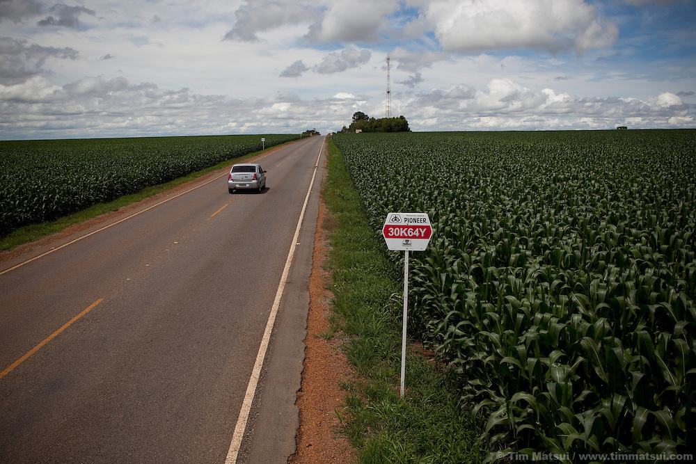 A licensed corn farm near Brasilia, Brazil.
