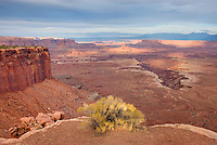 View og the White Rim, Canyonlands National Park