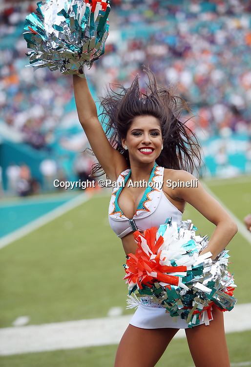 A Miami Dolphins cheerleader flips her hair and waves her pom poms during a dance routine during the 2015 week 13 regular season NFL football game against the Baltimore Ravens on Sunday, Dec. 6, 2015 in Miami Gardens, Fla. The Dolphins won the game 15-13. (©Paul Anthony Spinelli)