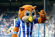 A mascot of Sheffield Wednesday during the EFL Sky Bet Championship match between Sheffield Wednesday and Bristol City at Hillsborough, Sheffield, England on 22 April 2019.