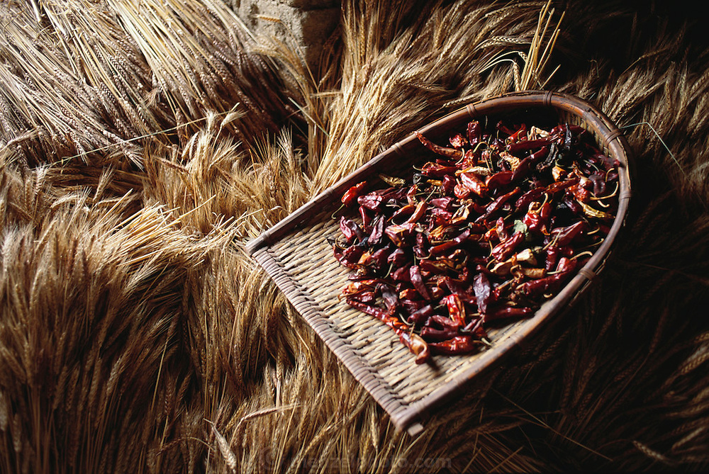 Wheat and dried chili peppers on the third floor storage area of Namgay and Nalim's house, Shingkhey, Bhutan. The Namgay household owns and rents land scattered in terraced strips through the hillsides near their home, each strip being devoted to one crop: wheat, rice, chilies, or potatoes.  Nalim and her daughter Sangay care for the children and work in their mustard, rice, and wheat fields. Namgay, who has a hunched back and a clubfoot, grinds grain for neighbors with a small mill his family purchased from the government. From Peter Menzel's Material World Project.