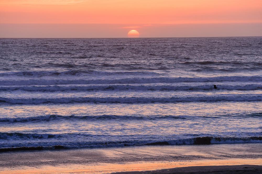 Oceano Dunes State Recreation Area<br /> Oceano, CA