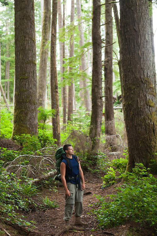 Henry stands in a grove of large trees along the West Coast Trail, British Columbia, Canada.