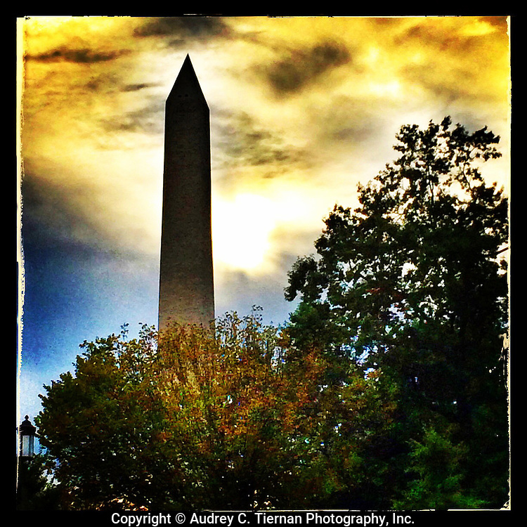 Washington, DC: September 28, 2014--- Golden light and dark trees frame the Washington Monument during an autumn sunset.  © Audrey C. Tiernan