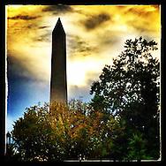 Washington, DC: September 28, 2014--- Golden light and dark trees frame the Washington Monument during an autumn sunset.  © Audrey C. Tiernan