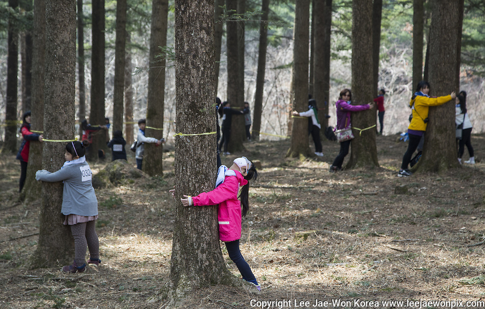 """People participate in a """"Tree Hug"""" event in Korea National Arboretum in Pocheon, northeast of Seoul, March 21, 2015. Total 1,226 people participated in the event in commemoration of the International Day of Forests on Saturday. The event broke the world records on the largest tree hug in one minute, according to Korea Forest Service. Photo by Lee Jae-Won (SOUTH KOREA) www.leejaewonpix.com/"""