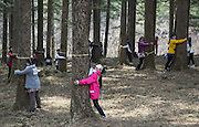 "People participate in a ""Tree Hug"" event in Korea National Arboretum in Pocheon, northeast of Seoul, March 21, 2015. Total 1,226 people participated in the event in commemoration of the International Day of Forests on Saturday. The event broke the world records on the largest tree hug in one minute, according to Korea Forest Service. Photo by Lee Jae-Won (SOUTH KOREA) www.leejaewonpix.com/"