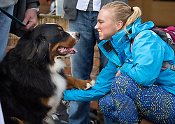Taylor Brunstad '17 visits with Aslan, a Bermese mountain dog therapy dog visiting campus to help take away stress for leading into finals week at PLU on Friday, Dec. 12, 2014. (Photo/John Froschauer)
