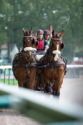 Chester Weber, (USA), Boris W, Boy W, Para, Splash, Uniek - Driving Marathon - Alltech FEI World Equestrian Games™ 2014 - Normandy, France.<br /> © Hippo Foto Team - Becky Stroud<br /> 06/09/2014