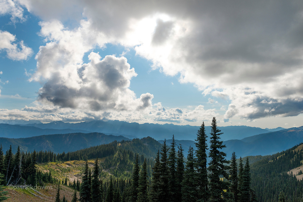 Looking south along the road to Obstruction Point in Olympic National Park.