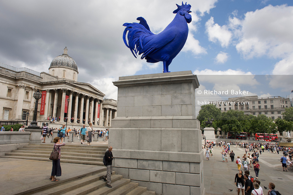German artist Katharina Fritsch's sculpture 'Hahn/Cock', a 4.72m high scale fibre glass and polyester resin, ultramarine blue domestic cockerel, just unveiled on the fourth plinth in the north-west corner of Trafalgar Square, London. The 4th plinth was intended to hold a statue of William IV, but remained bare due to low funds. In 1999, a sequence of three contemporary artworks to be displayed on the plinth were announced.