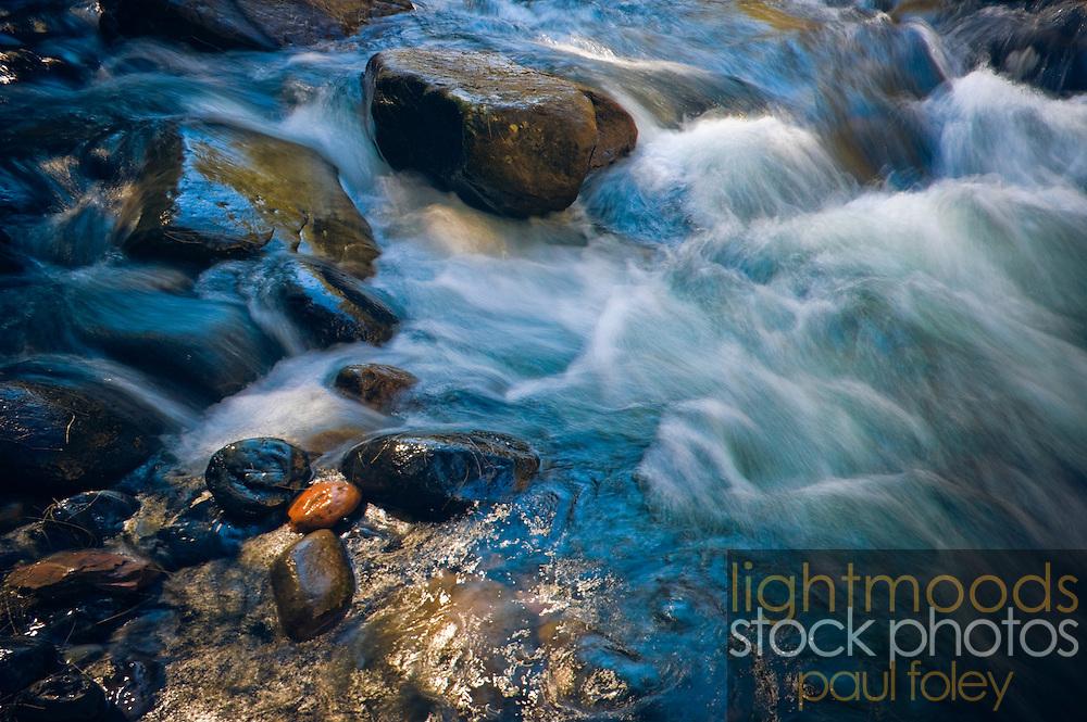 Running stream, Barrington Tops World Heritage Area, NSW, Australia