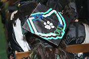Customized cap at graduate commencement. Photo by Ben Siegel