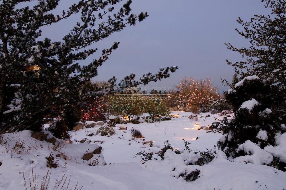 Denver Botanic Gardens, blossoms of light 2007
