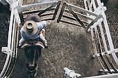 Urban Gauchos Facing Extinction