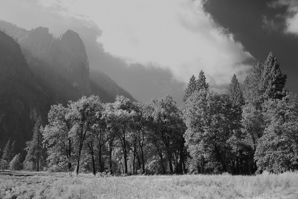 Cathedral Spires - Yosemite Valley Meadow - Yosemite - Black & White