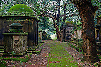 Inde, Bengale Occidental, Calcutta (Kolkata), Cimetiere de South Park street // India, West Bengal, Kolkata, Calcutta, South Park street cemetery