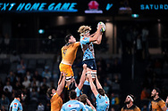 SYDNEY, AUSTRALIA - MAY 25: Waratahs player Ned Hanigan (4) and Jaguares player Guido Petti Pagadizaval (4) go up for the ball at week 15 of Super Rugby between NSW Waratahs and Jaguares on May 25, 2019 at Western Sydney Stadium in NSW, Australia. (Photo by Speed Media/Icon Sportswire)