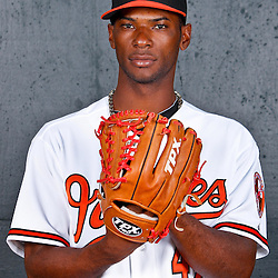 February 26, 2011; Sarasota, FL, USA; Baltimore Orioles relief pitcher Pedro Viola (47) poses during photo day at Ed Smith Stadium.  Mandatory Credit: Derick E. Hingle