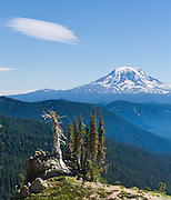 Hike Goat Ridge in Goat Rocks Wilderness Area, Gifford Pinchot National Forest, Washington, USA. A lenticular (lens shaped) cloud rides an atmospheric wave in the lee of Mount Adams, (12,281 feet / 3743 meters elevation), the second-highest mountain in the state of Washington, a potentially active stratovolcano in the Cascade Range.