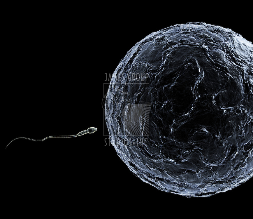A Sperm swimming toward the egg at a microscopic zoom over black