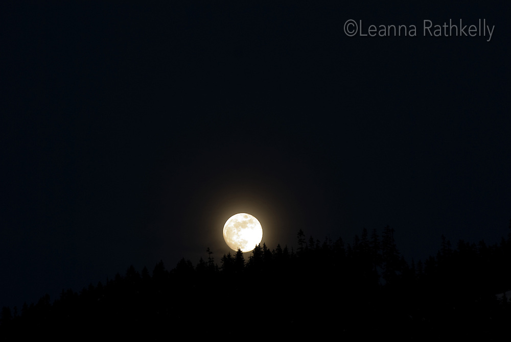 The full moon rises over the mountain, near Whistler, BC Canada