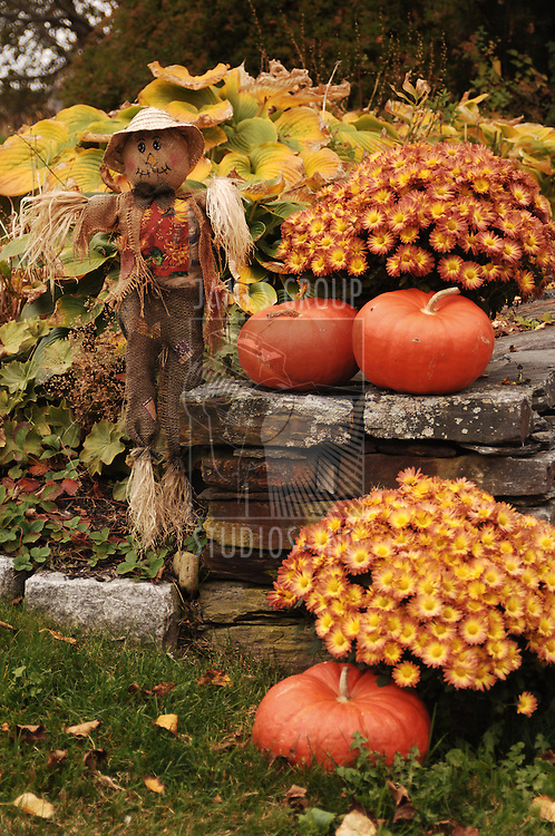 scarecrow and pumpkins next to stone wall with flowers and falling leaves
