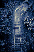 Looking down from street onto railroad tracks in Aiken, South Carolina