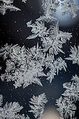 Elements of Winter