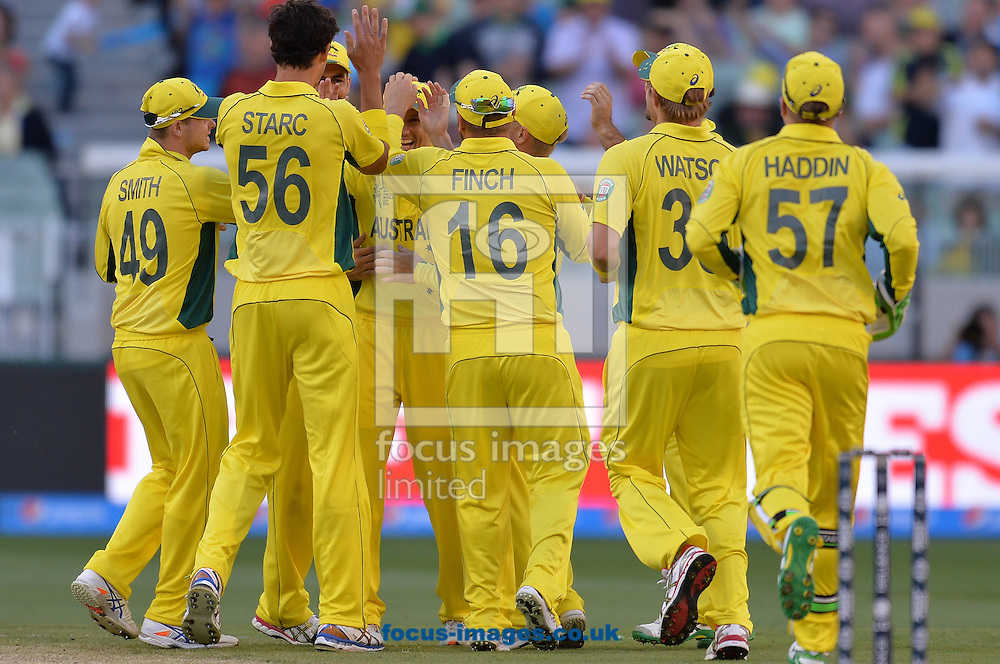 Australia celebrate the wicket of Moeen Ali during the 2015 ICC Cricket World Cup match at Melbourne Cricket Ground, Melbourne<br /> Picture by Frank Khamees/Focus Images Ltd +61 431 119 134<br /> 14/02/2015