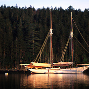 Schooner Mary Day at anchor in Buck's Harbor, Maine. .Photo by Roger S. Duncan.  ...