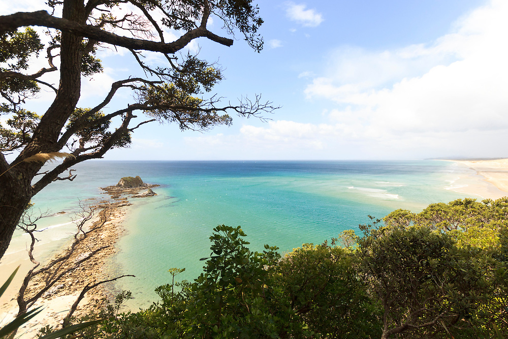 looking out to sea at Mangawhai, image available as print