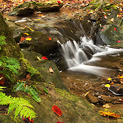 Deer Lick Falls in the Fall<br /> <br /> Available sizes:<br /> 18&quot; x 12&quot; print or canvas print<br /> <br /> See Pricing page for more information Also available as a mousepad or greeting cards.