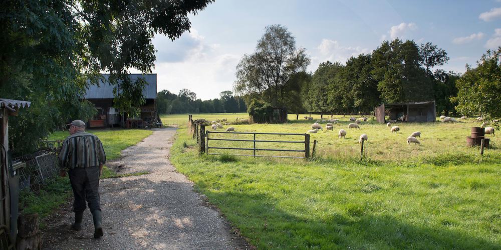 Nederland, Lievelde, 13augustus2014 Het traditionele boeren- platteland van het dorp Lievelde in de achterhoek van Gelderland