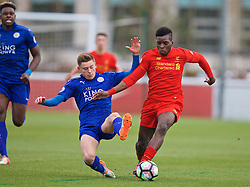 BURTON-UPON-TRENT, ENGLAND - Saturday, December 3, 2016: Liverpool's Sheyo Ojo in action against Leicester City's Harvey Barnes during the Premier League International Cup match at St. George's Park. (Pic by David Rawcliffe/Propaganda)